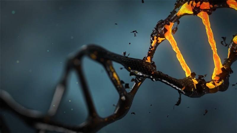El primer gen en la Tierra pudo ser un híbrido.