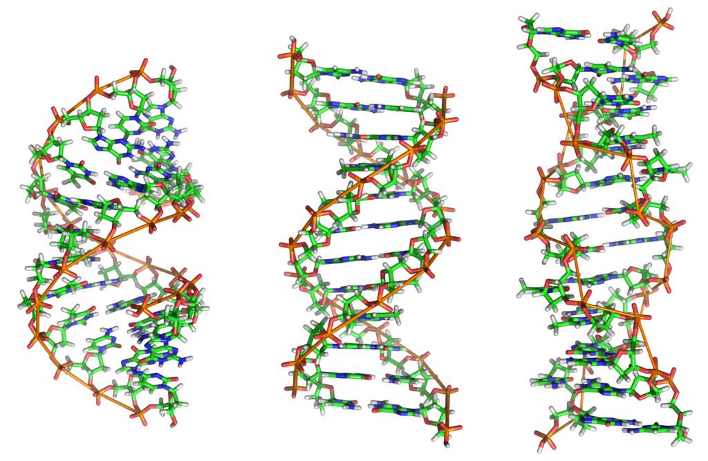¿Los extraterrestres codificaron «mensajes ocultos» en el ADN humano?