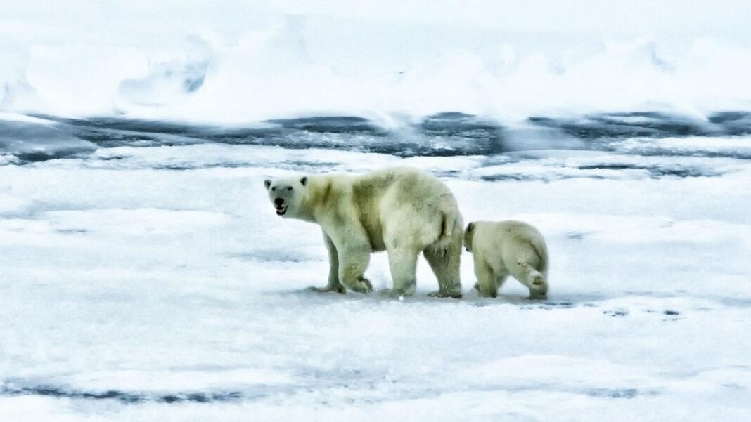El mundo se sobre a sus límites de la crisis climática, señala informe