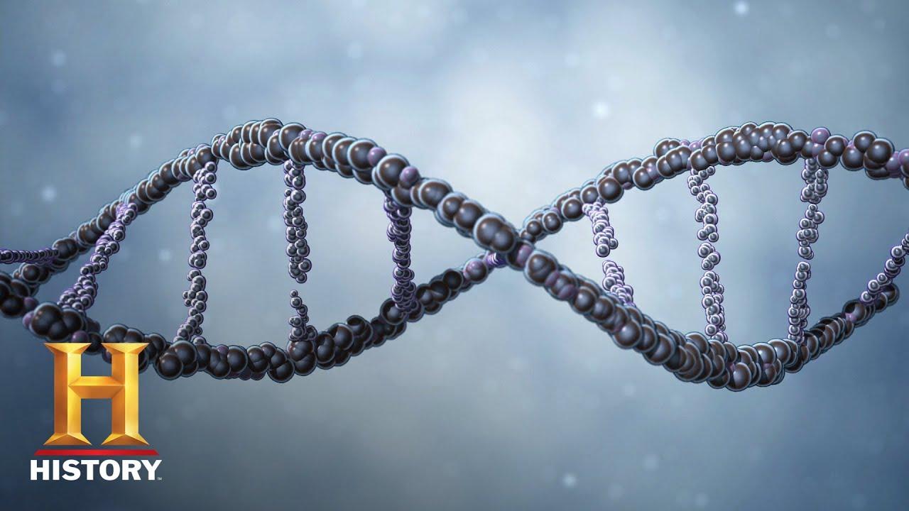 ¿Están codificados los mensajes extraños en nuestro ADN? – Ovnis y extraterrestres