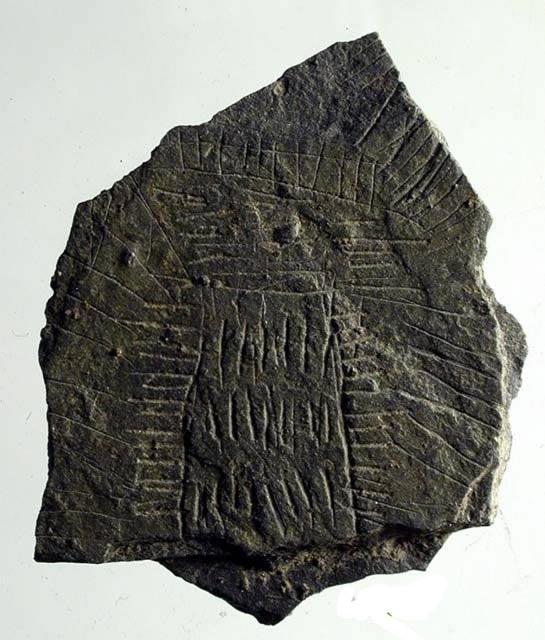 300 misteriosos discos de roca hallados en un antiguo santuario de hace 5.000 años en Dinamarca