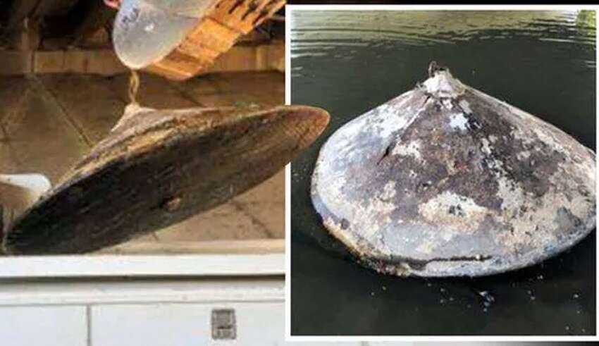 restos ovni rio 850x491 - Encuentran los restos de un OVNI en un río de Estados Unidos