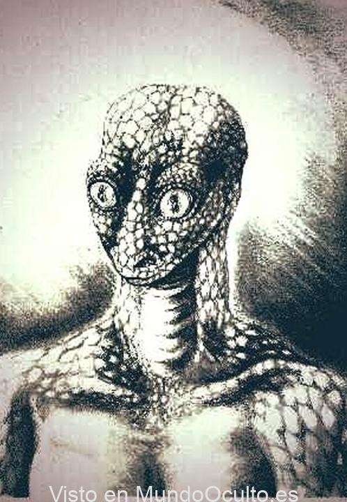«Huevo extraterrestre reptil» encontrado en Arkansas desata intenso debate