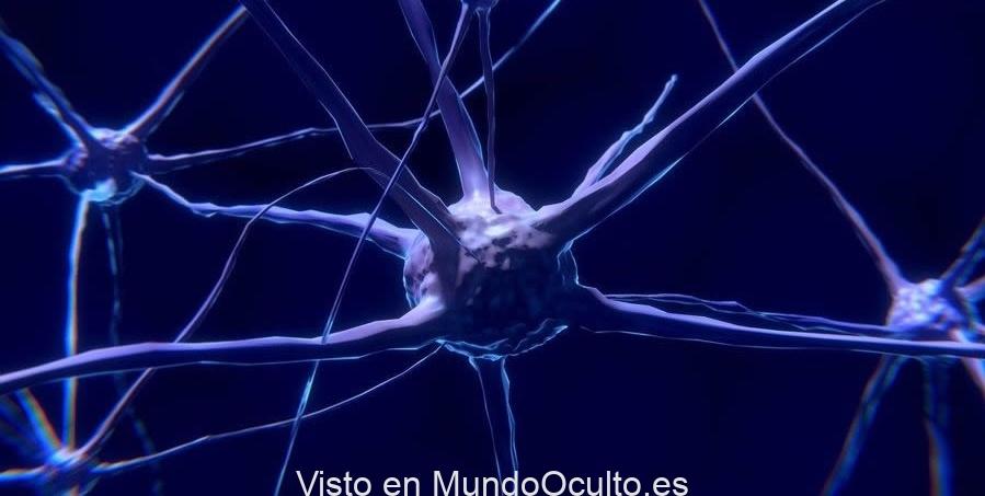 Conciencia es creada por ondas electromagnéticas emitidas por neuronas, propone investigador