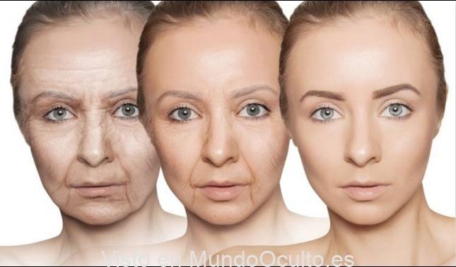 Descubren Una Molécula Que Impide El Envejecimiento Prematuro