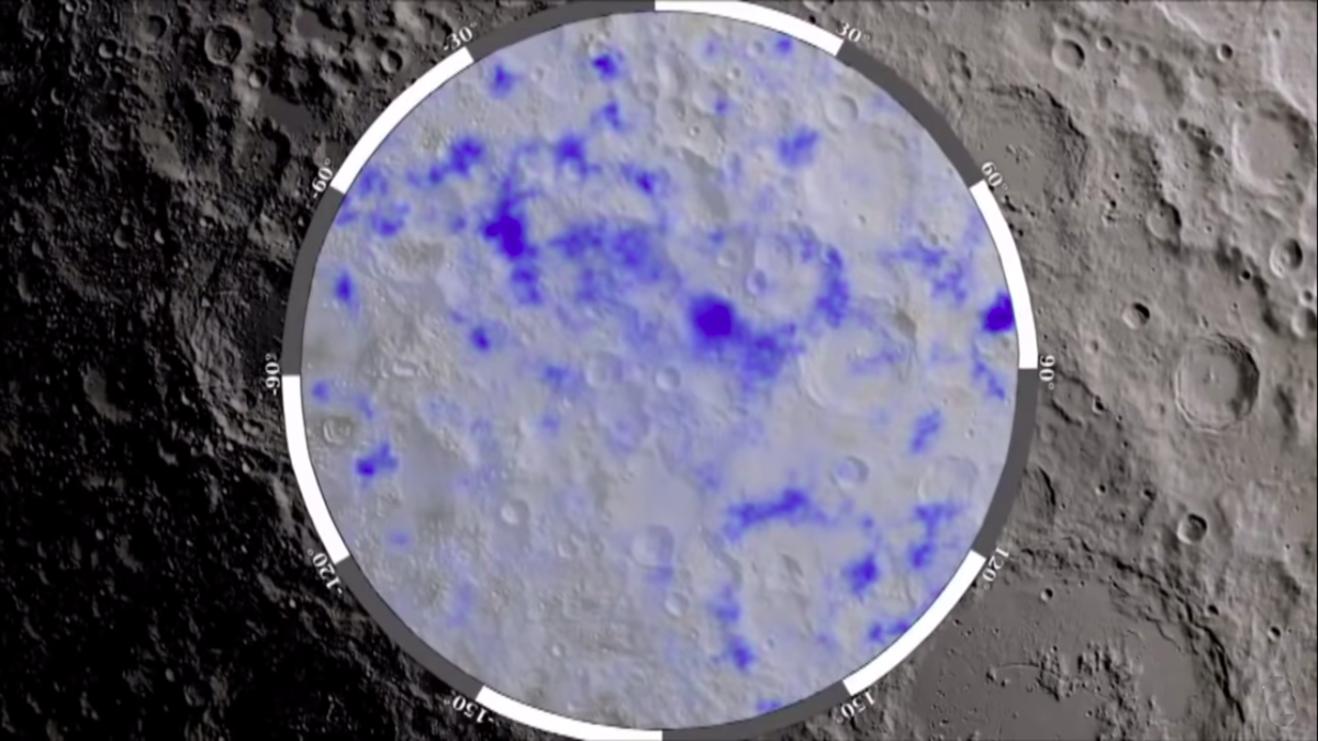 Plancton Lunar Luminoso))