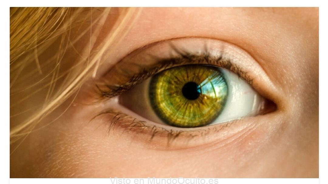 Los humanos tenemos los genes para regenerar los ojos ciegos, pero la evolución desactivó esta función
