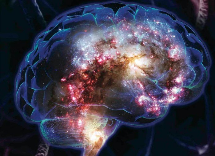 Mente del cerebro