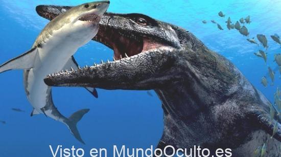 Los científicos han descubierto el motivo de la extinción de enormes monstruos en la Tierra.