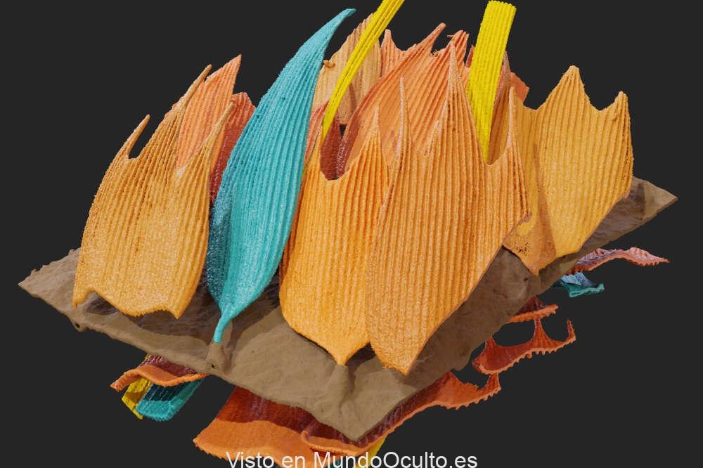 Polillas desarrollan metaestructura en las alas que absorbe el sonido y puede eludir la ecolocalización de los murciélagos