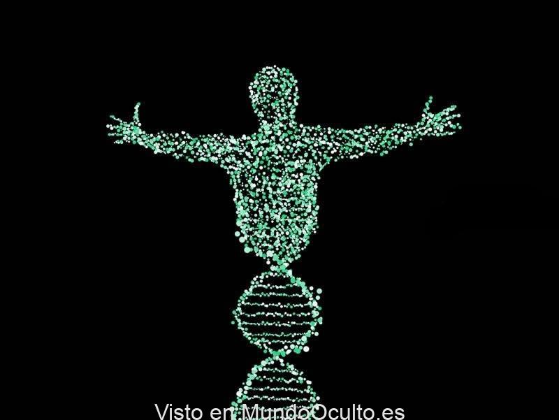 Una señal inteligente «extraterrestre» en el interior del código genético humano