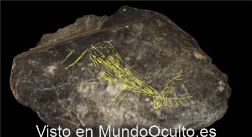 Descubren una placa con grabados de animales de más de 11.000 años de antigüedad