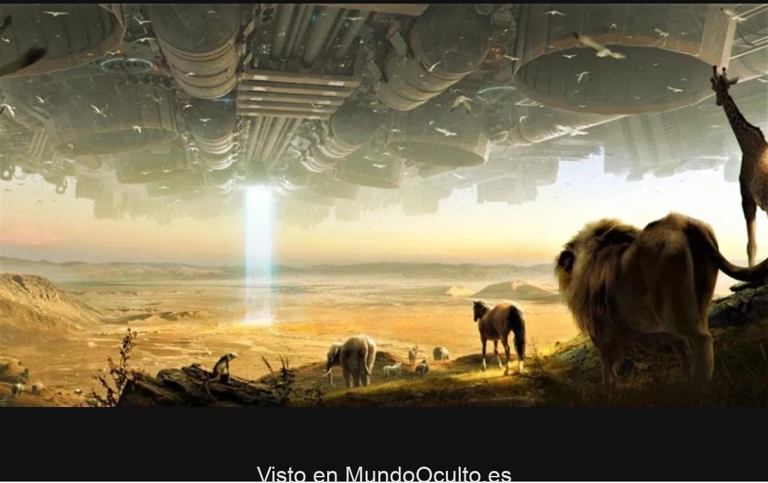 El arca de Noé era un laboratorio de ADN y la gran inundación NO fue natural: avistamientos de ovnis extraterrestres