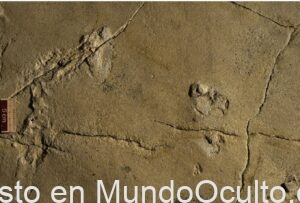 huellas de 5.7 millones de años