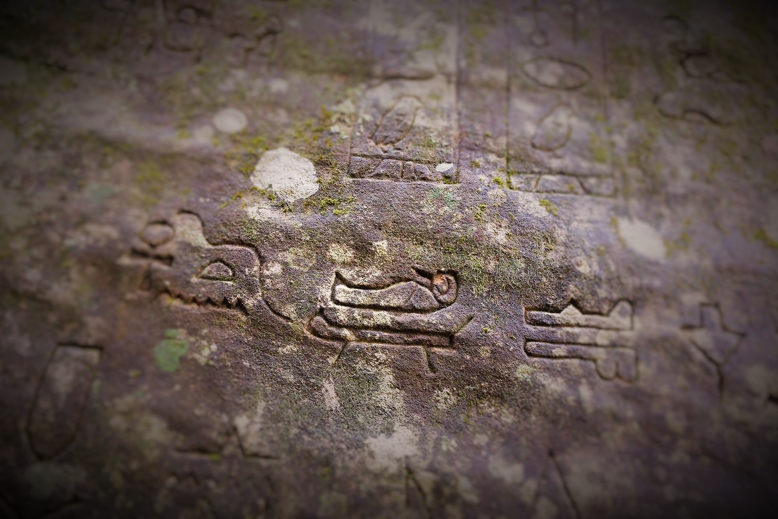 These Are The Gosford Glyphs.