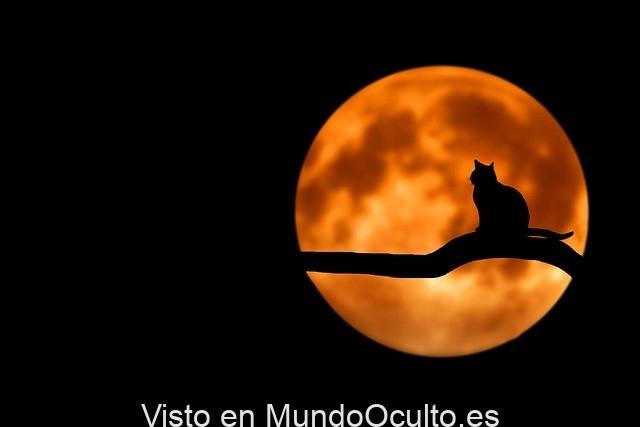 Luna llena afecta la figura en que la gente duerme, revela investigación
