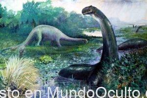 Alguna Evidencia Sugiere Que Algunos Dinosaurios Todavía Pueden Existir