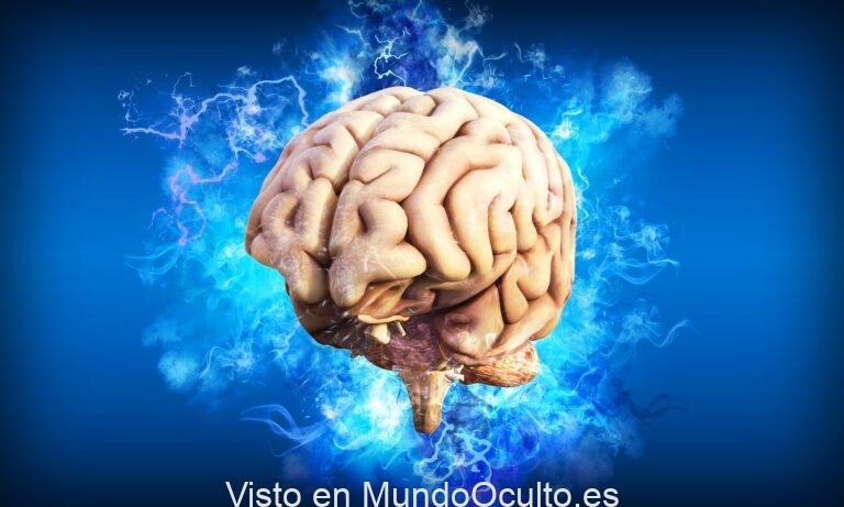 Hallan la clave para mantener al cerebro eternamente joven