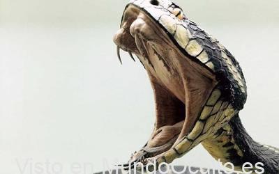 Humanos tienen la capacidad de desarrollar veneno como las serpientes