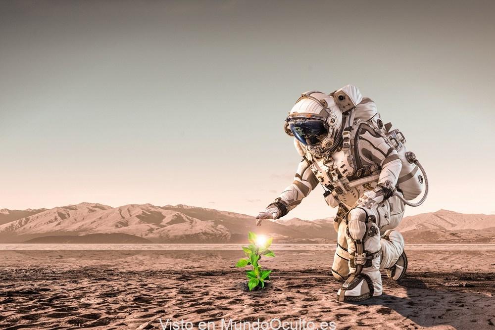 La vida puede estar esparcida por el planeta Marte, dice un experto