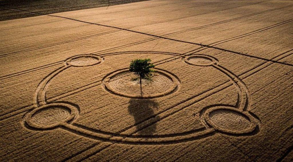 Crop Circles: El mensaje que ocultan los «círculos de las cosechas»